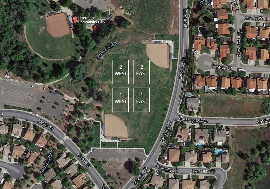 field-livermore-grass